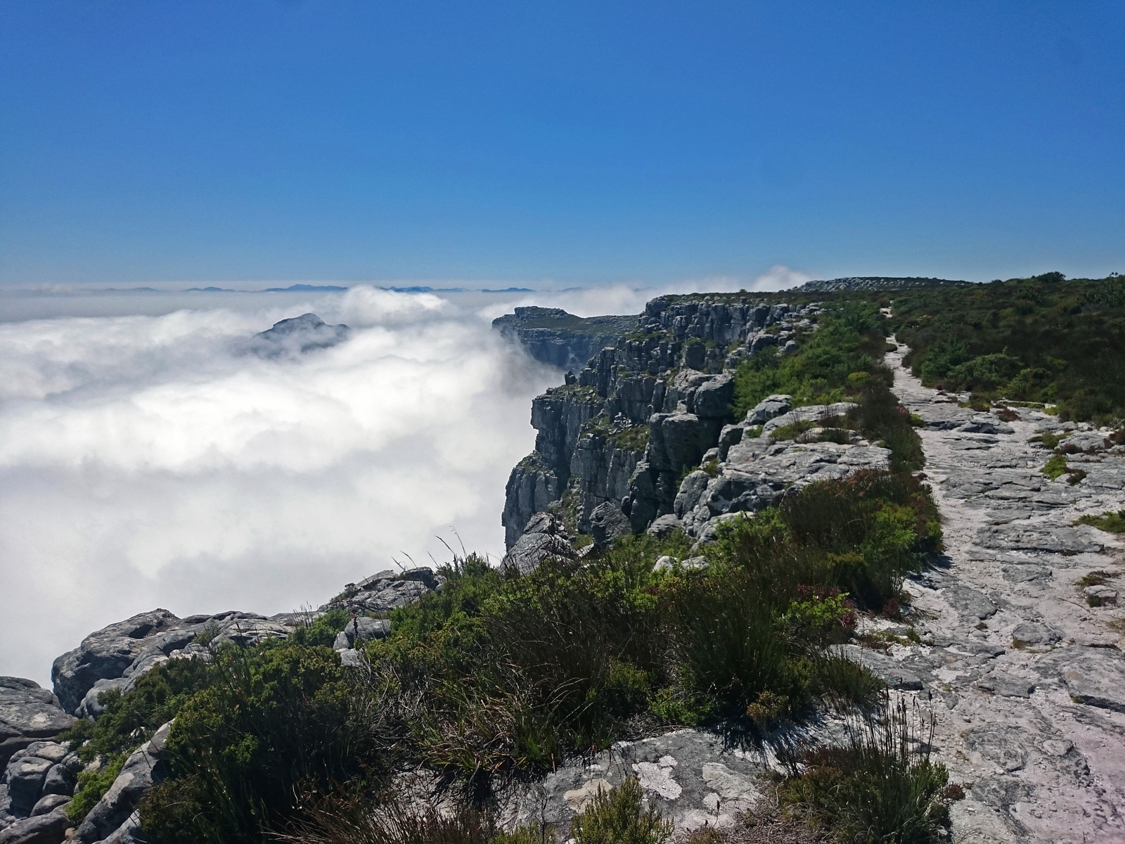 table-mountain-tafelberg
