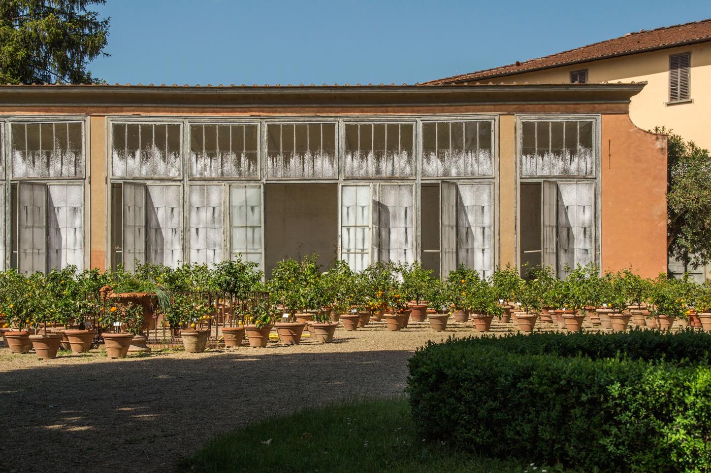 zitronen giardino italy