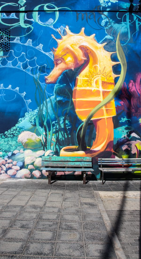 corralejo-hafen-graffiti