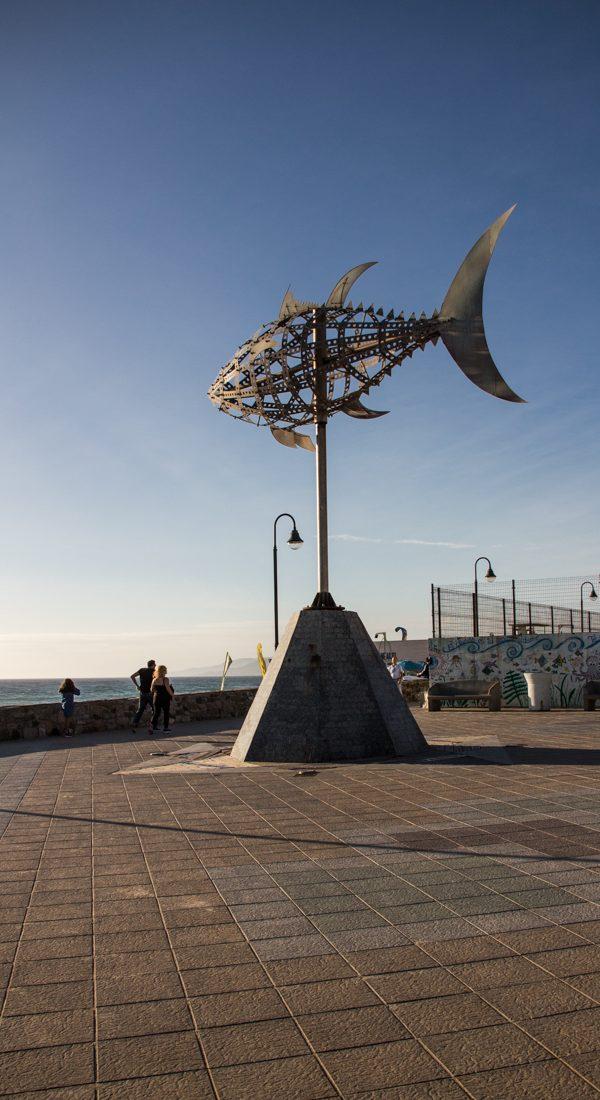 tarifa-fisch-promenade