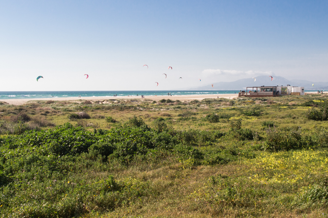 tarifa-beachbar-kites