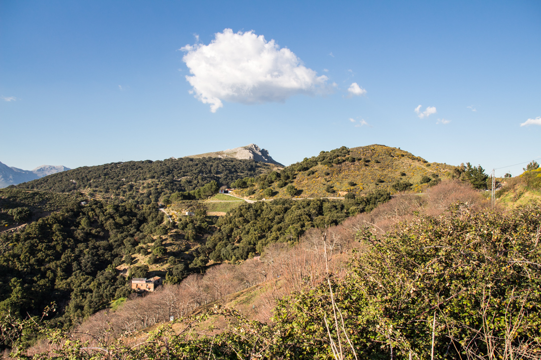 ronda-anfahrt-landschaft-sierra