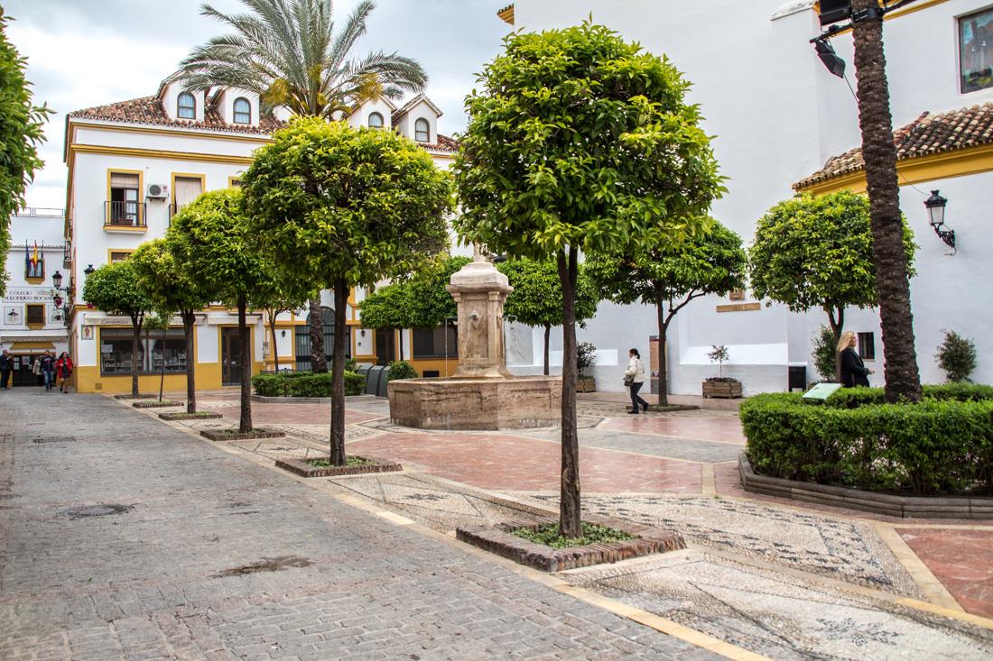 marbella-kirchenplatz-orangenbaum
